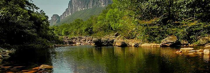 Vegetação e lago calmo - Parques Nacionais